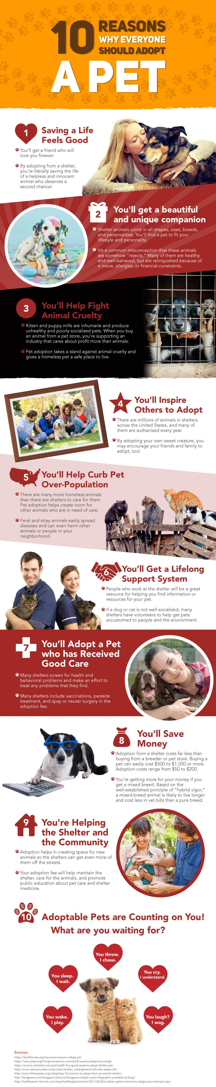 Reasons-To-Adopt-A-Pet